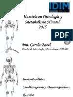 clases-1-y-2 osteocitos.pdf