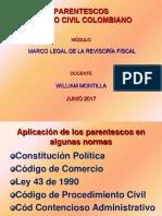 6. Parentesco.pdf