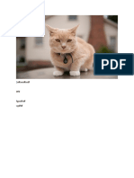 New Microsoft Word Documentsdsdfasdfa