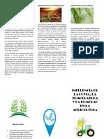 friso agroecologia.docx