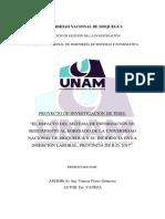 honorio modelo py tesis edit.docx