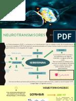 Serotonina y Dopamina