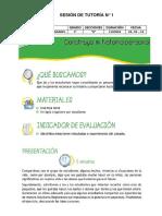 SESIONES DE TUTORÍA-2019.docx