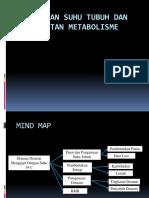 Pengaturan suhu tubuh dan metabolisme