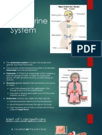 Endocrine-System.pptx