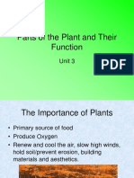 Parts of the plant ppt presentation.ppt