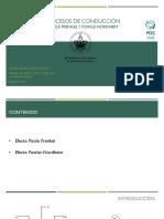 Procesos de Conducción Poole Frenkel y Fowle-nordheim