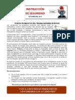 INSTRUCTIVO DE SEGURIDAD N° 301 TODOS FUIMOS UN DÍA TRABAJADORES NUEVOS.docx