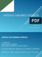 miembroinferior-irrigacion-151213020353