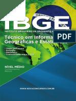 ibge - tecnico em informacoes geograficas e estatisticas.pdf