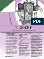 Bloque 5 y 6.pdf