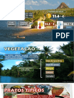 PARÁ - BRASIL
