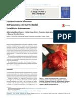 Artículo de Neuroanatomia