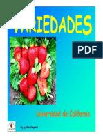 3Varied.DE FRESAS.pdf