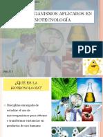 Guía+de+estudio