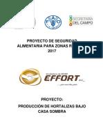 AGRICULTURA PROTEGIDA.docx