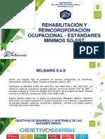 Rehabilitación y Reincorporación laboral Estandares minimos.pdf