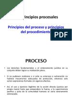 Los Principios Procesales I