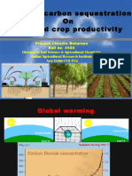 impactofcarbonsequestrationonsoilandcropproductivity-140921093509-phpapp02.pdf