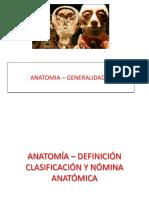 anatomia1-110121145643-phpapp01.pdf