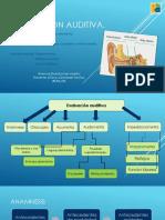 346248045 Audiologia Practica PDF