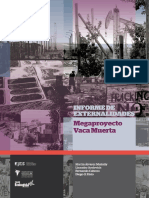 Informe Externalidades Vaca Muerta