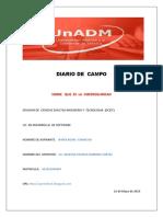 Diario de Campo89