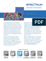 Spectrum Group Flier on Foreign Governmental Clients