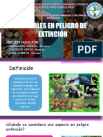 Animales en Peligro de Extinción Ppt