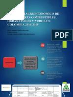 Análisis Macroeconómico de Los Sectores Combustibles, Obras (1)