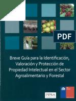Breve-guia-para-la-identificacion_PIPRA.pdf