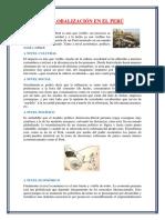 La globalización en el Perú.docx