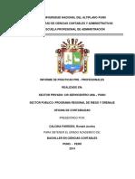253110786-Informe-de-Practicas-Pre-Profesionales-Contables.docx