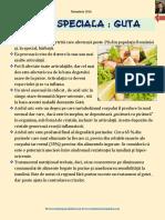 dieta_guta.pdf