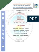 DESARROLLO-DE-LA-CARA-SIN-TERMINAR.docx