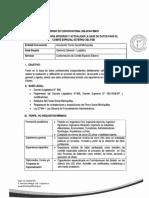 Convocatoria N°006 2019 FSM/CI