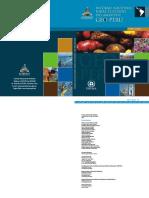 GEOPERUCONAM2004.pdf