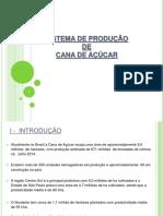 SISTEMA DE PRODUÇÃO DE CANA DE AÇÚCAR.pdf