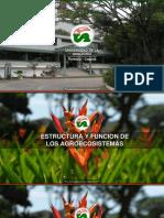estructura y funcionamiento de agroecosistemas (1).pptx