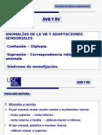 325085194-TEMA-1-Anomalias-de-La-VB-y-Adaptaciones-Sensoriales.pdf
