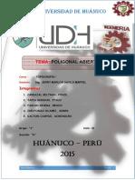 2015 poligonal abierta imprimir.docx