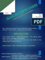 7. GLUCOCORTICOIDES
