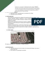 PREEFA (2)
