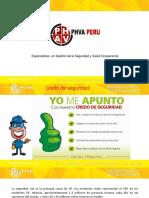 Seguridad Vial - Phva Peru