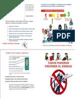 Diptico Dengue