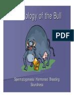 Andrology Bull