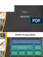 Chapter 9 - Biofloc Technology (BFT)