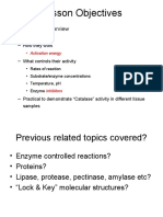 Enzymes - Examville Study Guides