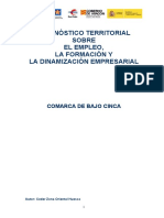 diagnostico-bajo-cinca.pdf