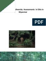 Bio Diversitty in Myanmar